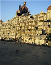 Pigeons begin their day at Gateway of India, Taj Hotel: by renuka, Views[203]
