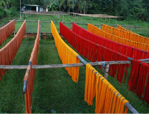 AFTER COLOURING THE THREADS ARE DRYING IN OPEN AIR