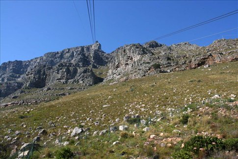 View up at Table Mountain