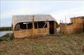 homes on Uros, a floating island: by rich, Views[152]