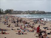 Manly Beach: by rich, Views[122]