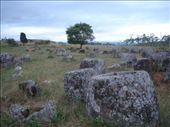 The Plain of Jars.  These Jars were carved out of solid stone around 2000 years ago, and no-one is quite sure who, why or how! It's a mystery zippy.: by richie, Views[158]