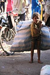 Our sad little friend Chota (Tiny). She is growng up on the street and picks up rubbish into this massive sack from dawn until midnight everyday. We found out she earns 45 pence per day. She will likely be doing this for the rest of her days: by rickshawalas, Views[399]