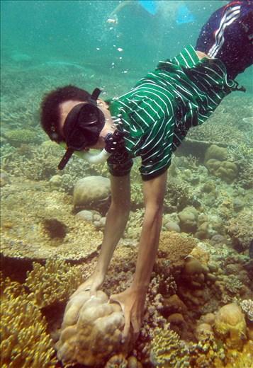 go deep, explore menjangan Island
