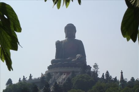 Thr Giant Bronze Buddha (Largest seated bronze Buddha in the world!)