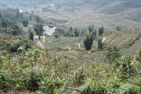 View from the plateau in front of Sapa