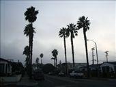 Ocean Beach, San Diego: by rob_berman82, Views[111]