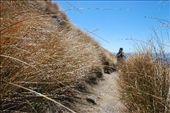 Descent, Tongariro Crossing, Tongariro National Park, New Zealand: by robbiesue, Views[172]