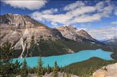 The amazing Peyto Lake, with his incredible color, and its dog-head shape, is surely one of the most beautiful lakes all around the world. A magical spot for photography.: by rockies, Views[1138]