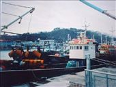sea-going trawler unloaded of its catch ready to go back out: by rogerinkorea, Views[184]