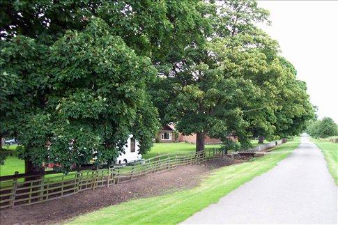 Woodborough countryside
