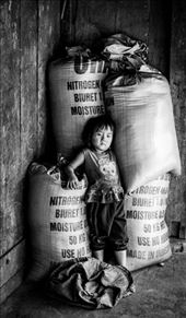 Little girl met while traveling in North Vietnam: by roxaria, Views[80]