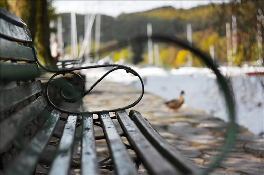 """Traveling throughout the English countryside we stumbled upon Lake District. With the use of my 50mm lens """"Unoccupied"""" was produced encompassing one of the lakes, a duck, and the chair. This shot illustrates the beauty that can be found in random places in the UK and I love it for just that."""