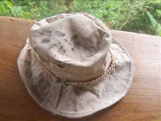 Time to be looking for a replacement hat - the mold is winning.