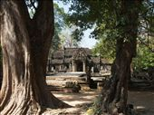 Entrance to Ta Prohm: by russc_01, Views[126]