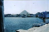A view of the holy pond: by s_roy_biswas, Views[202]
