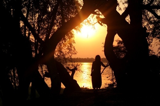 Sunset and silhouette...