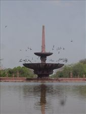 PIGEONS RESTING AT THE THE FOUNTAIN: by sagarahuja, Views[91]