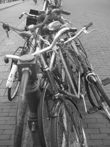 Amsterdam is the spiritual home of the bike, all bikes make their way there eventually. Seriously. Go and see for yourself