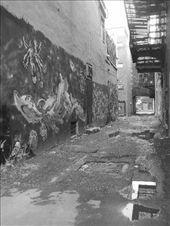 Graffiti is abundant, but it's all great art..: by sair, Views[117]
