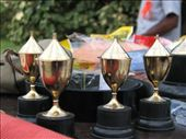 cricket trophies - the biggest we've ever seen.: by salvation_karmy, Views[213]