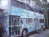 Byron Bay: un bus ou on peut dormir dans l'hostel ou je restais: by sama, Views[315]
