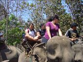 balade sur des elephants: by sama, Views[209]