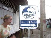 en preparation pour le prochain tsunamie: by sama, Views[226]