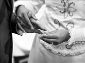 getting married: by samaniego, Views[131]