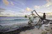 Pikinini from Pango plays on the beach during sunset: by samcreek, Views[145]