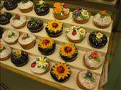 Cupcakes: by samrubin79, Views[79]