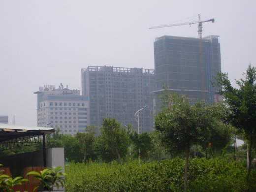 my building from afar! (middle one)