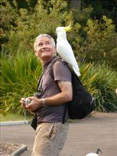 The birdman of Sydney: by sarahandphil, Views[396]