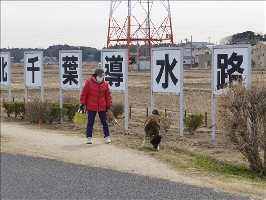It used to be one of the most polluted lakes in Japan, but has since been cleaned by a sophisticated system, the name of which lies in the kanji (Chinese characters) behind the lady's head. She is walking her dog, rugged up in an insulated jacket typical of those worn by the Japanese in winter, and is wearing a facemask. This is worn either as a courtesy to others when sick, or as a preventative measure of avoiding catching illnesses, particularly in the winter months.