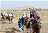 At the beginning of the journey, buildings are present on one side even as small dunes litter the other horizon. As the Berber guides direct the camels, they joke in broken Arabic with the student travelers.: by sarahewentz, Views[188]