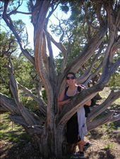 Hiking!: by saritaskr, Views[107]