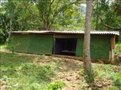 our house, our room is the one on the left, and yes it is made of mud and bamboo curtains: by scarlett333, Views[220]
