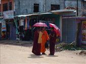 monks in town: by scarlett333, Views[143]