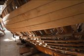 """""""Peggy"""" a 22ft Yacht designed and built by Adrian Dean and named after his wife. At its current state, Huon Pine planks begin to enclose the skeleton of the hull as light leaks through the uncovered areas.: by scottnolan, Views[967]"""