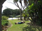 sunbaking in a roundabout: by sean_and_liana, Views[165]