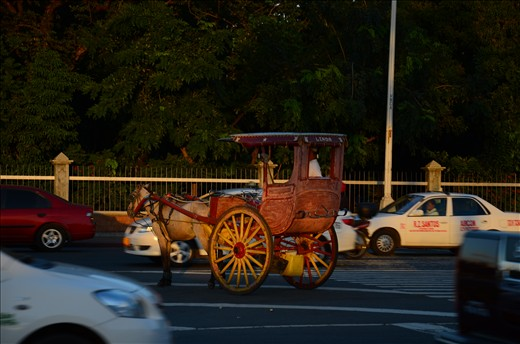 A traditional horse drawn carriage in the middle of the road just waiting