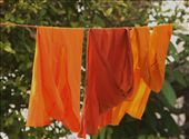 Even monks have dirty laundry, Luang Prabang: by seesea, Views[237]