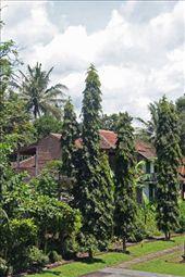Javanese architecture, Borobudur: by seesea, Views[265]