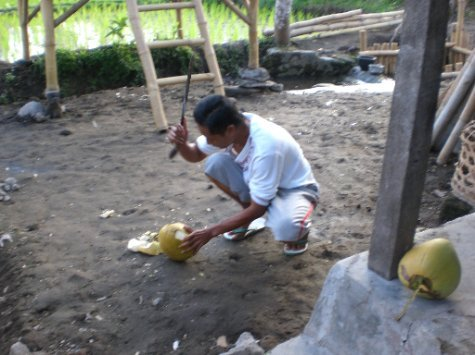 Cutting the Coconut