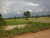 Typical Cambodian landscape.: by seilerworldtour, Views[162]