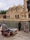 Urfa: by serendipitously, Views[276]