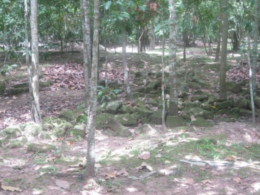 Rubble and jungle on the former site of the Angkorian Royal Palace