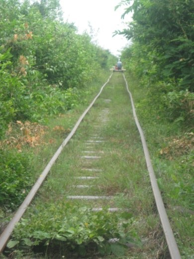 The old French train tracks that went unused for decades (Cambodia still has no train system)