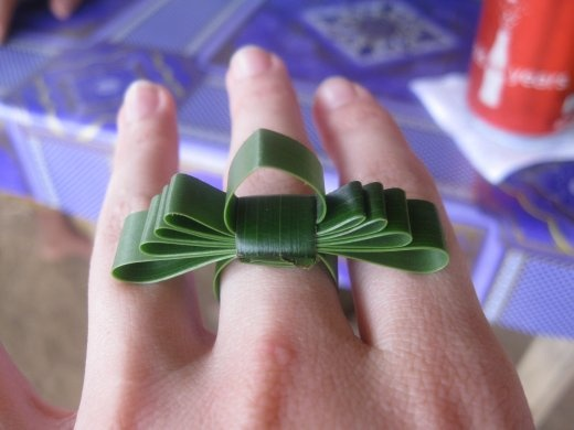 My awesome grass ring