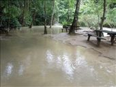We are guessing that during the dry season this picnic area is not quite so...wet.: by sglass, Views[72]